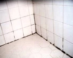 Grout can harbor mold